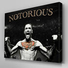S570 Conor McGregor UFC Notorious Canvas Art Framed Ready to Hang Poster Print