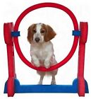 second hand dog agility equipment