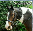 WORKING HUNTER LEATHER SHOWING BRIDLE WITH REINS SHETLAND PONY COB OR FULL SIZES