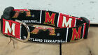 University of Maryland Terrapins Designer dog collar with leash set option