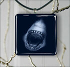 WHITE SHARK SEA BLACK NIGHT PENDANTS NECKLACE OR EARRINGS -dc33