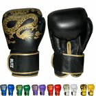 Blitz Warrior Muay Thai Leather Boxing Gloves