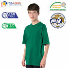 Baby Boys Girls Plain 100% Cotton School PE T-Shirt 11 Colours 6 Months-13 Years