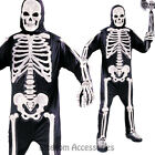CL985 Totally Skeleton Skele Bones Skull Halloween Horror Scary Costume Outfit