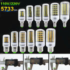 E12 E14 E27 Corn Led Light Lamp 5733 Smd Lights Bulb Candle Leds Ac110v120v220v