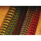 Hareline Ringneck Pheasant Tail Feathers Fly Tying Materials Assorted Colors