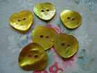 6 Large YELLOW / GOLD  Heart  Agoya Shell Buttons - 20mm
