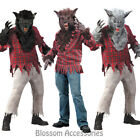 CL132 Werewolf Halloween Costume Big Bad Wolf Man Animal Monster Outfit & Mask