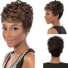 Wigs Fashion Women Sexy Short Wavy Curly Brown Mix Synthetic Hair Full Wig + PL2