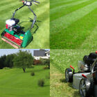 FAMILY LAWN Grass Seed.  Available In  20,50,100,150 & 200 sq meter Packs