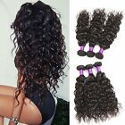 8A Unprocessed Virgin  Hair Water Wave Human Hair 100g/ Bundle Extensions