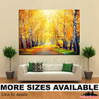 A Wall Art Canvas Picture Print - Autumnal Park Trees Orange Sun Rays 4.3