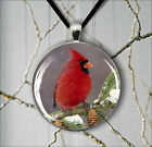 BIRD RED CARDINAL WINTER AND PINE CONE PENDANT NECKLACE  -sjn5X