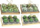 Cactus Tea Light Candle Home Decoration Plant Barrel Agvae Gift Box Pack Of 6