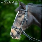 Gallop Padded Bridle + Rubber Reins All sizes Free P&P
