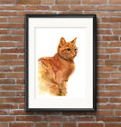Cute Kitten Watercolour Ginger Cat PRINT of original painting signed by artist