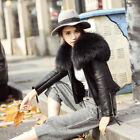 67009 Large Raccoon Fur Collar Coat Jacket Genuine Leather Real Fur Lined Women