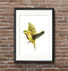 🎨 WILL ELLISTON Green Finch Bird Watercolor PRINT of my painting signed Artwork