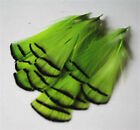 Wholesale 10/20/50/100pcs rose beautiful 2-4 inch golden pheasant feathers