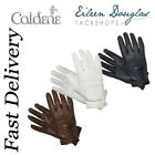 CALDENE COMPETITION RIDING GLOVES BLACK, WHITE OR BROWN RRP £21