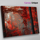 SC259 Red Autumn Forest Scenic Wall Art Picture Large Canvas Print