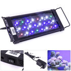 12 18 24 30 36 48 72 LED SMD Multi Color Aquaruim Fish Tank Light Extendable