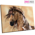 A722 Brown White Horse Majestic Animal Canvas Wall Art Framed Picture Print