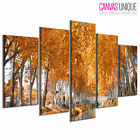 PC1026 Yellow Autumn Leaves River Scenic Multi Frame Canvas Wall Art Print