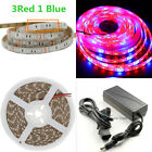 Waterproof SMD 5050 LED Strip Grow Light Lamp Full Spectrum Full Kit For Plants