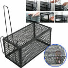 Rat Catcher Spring Cage Trap Humane Large Live Animal Rodent Indoor Outdoor#