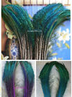 Wholesale 50pcs beautiful natural Peacock arrow feathers 30-35cm / 12-14inches