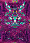 Forex-Bild Space Cat (Feat  Bryan Gallardo) - Danny Ivan