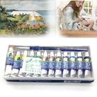 12 Color Acrylic Paint Set 5 ml Tubes Artist Draw Painting P