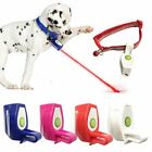 Внешний вид - Pet Dog Cat Collar Laser Light Fun Training Toys  Kitten Interactive Clip Gifts