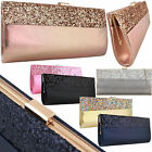 Glitter Shimmer Wedding Bridal Women Clutch Vintage Hen Party Ladies Evening Bag