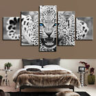 Leopard Blue Eyes Tiger Black White Picture Animal Canvas Wall Art Prints Mural