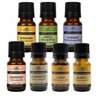 essential oils by 10ml bottle 100 percent