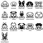 Peeking Dog Breed Decal Multiple Colors 4 inch