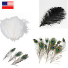 10Pcs/100Pcs Natural Peacock Ostrich Bird Real Feather Wedding Party Decor Gift