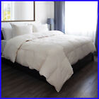 650 fill power down comforter - [No Tax] Allied Home RDS Cotton Down Comforter, 650 Fill Power