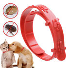 1PC Anti Flea & Tick Collar for Dog and Cat Universal Pet Protection Neck Strap