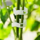 10/50/100Pcs Tomato Clips Supports Connect Plants/Vines Trellis/Twine/Cage 23mm