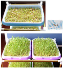 Sprouter Nusery Pots 2sets Double Layer Seed Sprouter Hydroponics Basket Flower