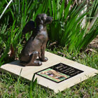 Pet Memorial Figurine Statue - Angel Dog. With/Without Personalised Plaque