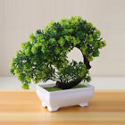 Simulation Fake Potted Bonsai Tree Artificial Plant Desk Ornament Home Decor US