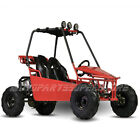125cc Go Kart with Automatic Transmission w-Reverse free shipping