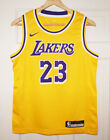 Youth Nike LeBron James #23 Los Angeles Lakers Icon Edition Gold Swingman Jersey