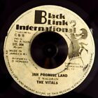 Vitals, The - Jah Promise Land  /  Black Link Style - Promisable Dub