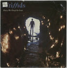 Triffids (80s) Bury Me Deep In Love UK 7