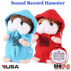 Talking Hamster Electronic Plush Toy Mouse Pet Sound Gift Child Plush Cute Gift
